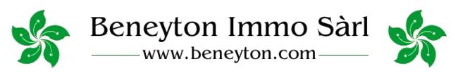 BENEYTON IMMO Sàrl - Liste des objets